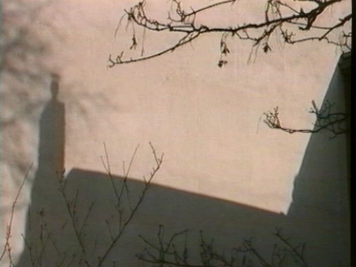 Film Still: Lutz Mommartz - Wall of shadows