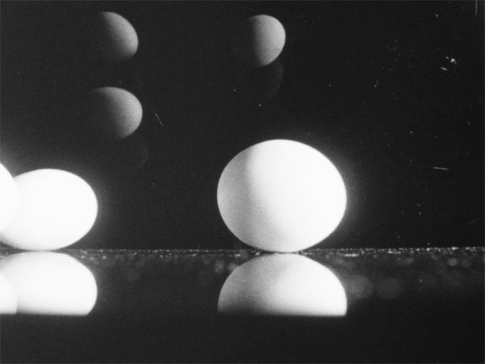 Film Still: Lutz Mommartz - Trade mark eggs